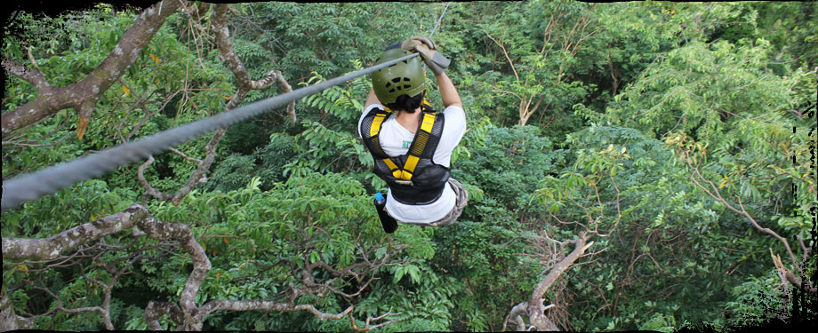 Cable Jungle Adventure : Flying from tree to tree