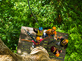 Patong Zipline Adventure : Gear Up